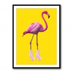 Flamingo Boots Framed Print