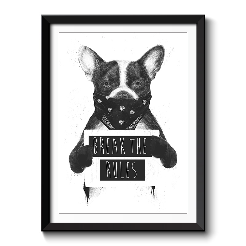 Break The Rules Framed Print