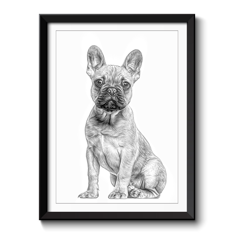 French Bulldog Black and White Framed Art Print