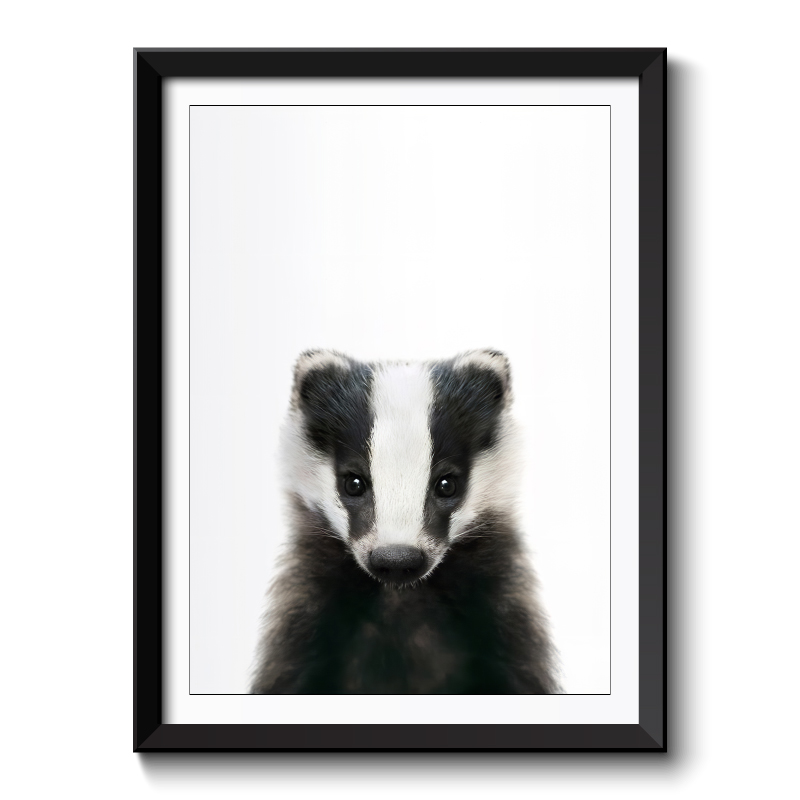Baby Badger Framed Print