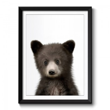 Baby Bear Framed Print