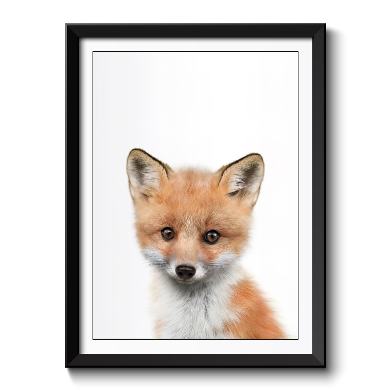 Baby Fox Framed Print