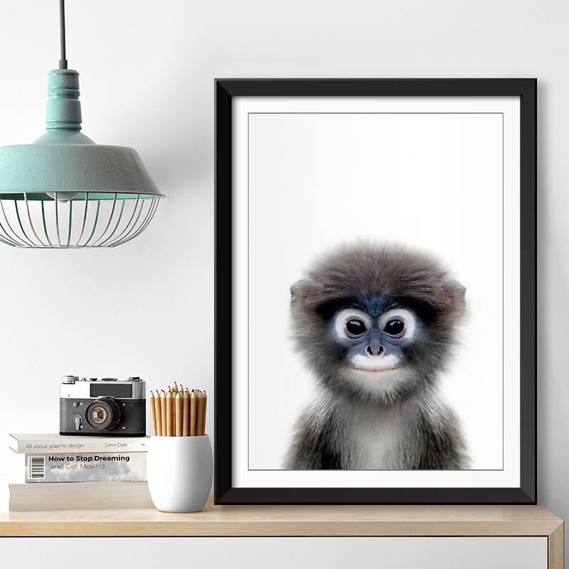 Baby Monkey Framed Print
