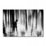Caught In The Sorrow Canvas Wall Art