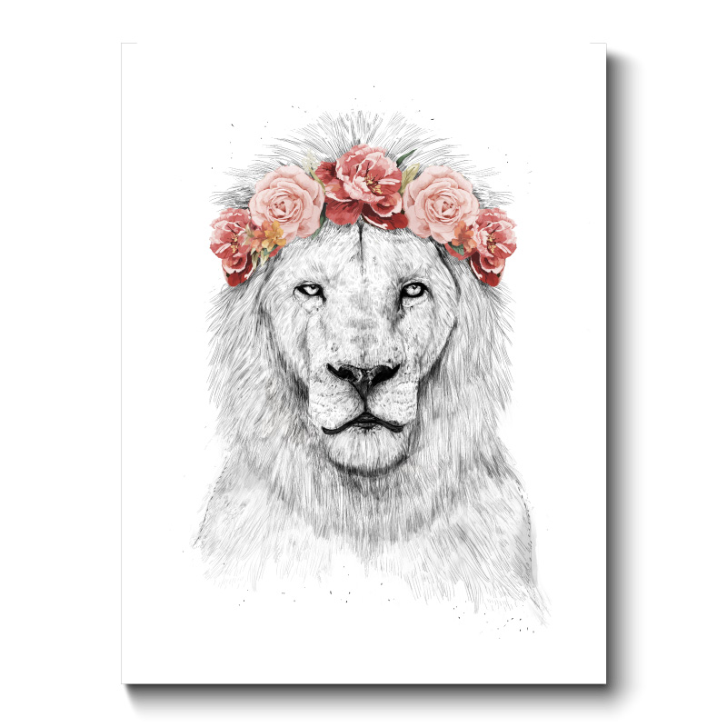 Festival Lion Canvas Print