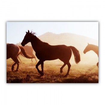 Sunrise Horses Wall Art Canvas Print