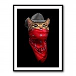 Pussy Outlaw Framed Print