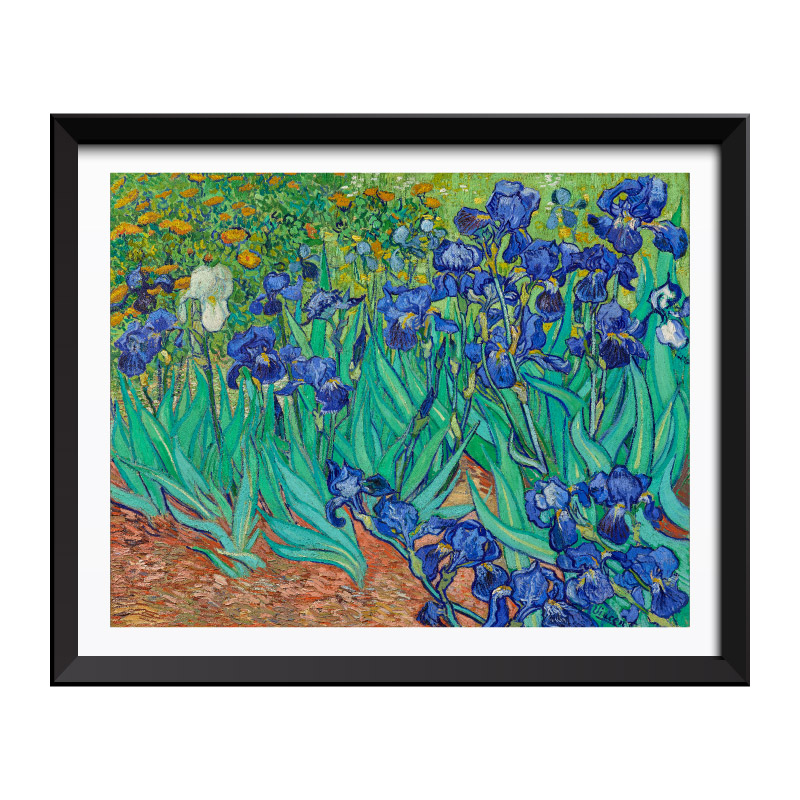 Irises (1889) by Vincent Van Gogh Framed Art Print