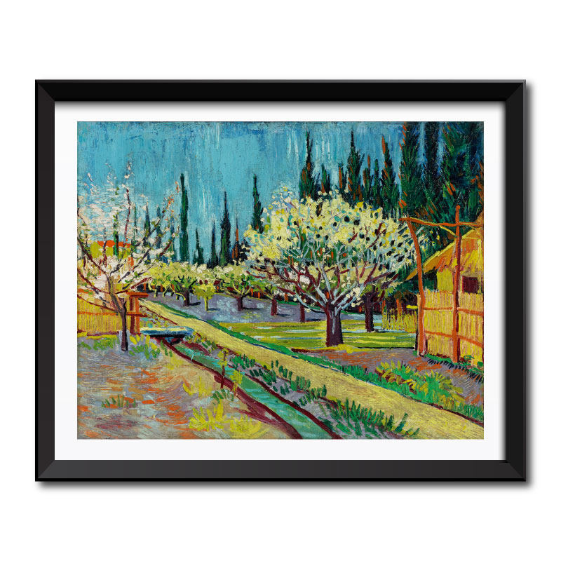 Orchard Bordered by Cypresses (1888) by Vincent Van Gogh Framed Art Print