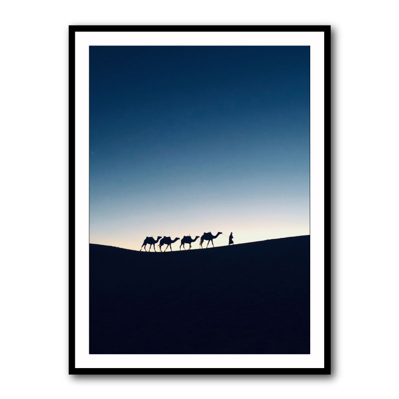 Camels in the Desert Wall Art Print
